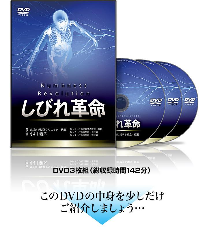しびれ革命DVD