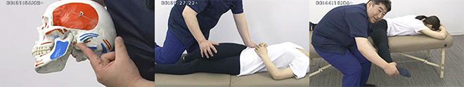 しびれのでやすい下肢への施術がわかりやすく学べます