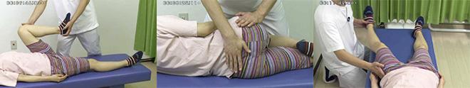 股関節施術の実演から、運動療法までくわしく解説します
